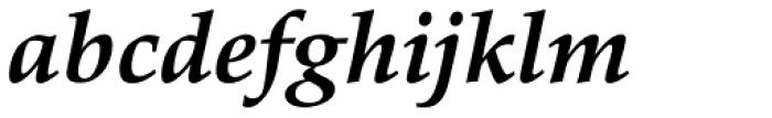 Palatino eText Bold Italic Font LOWERCASE