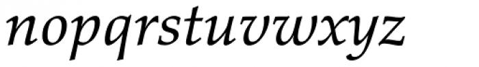 Palatino eText Italic Font LOWERCASE