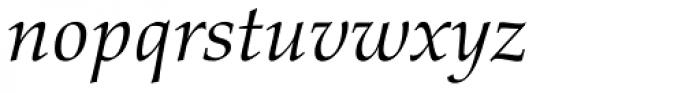 Palatino nova Paneuropean Italic Font LOWERCASE