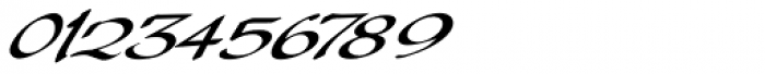 Palisade Bold Italic Font OTHER CHARS