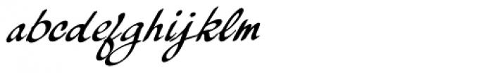 Palisade Bold Italic Font LOWERCASE