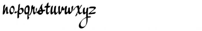 Palisade Bold Font LOWERCASE