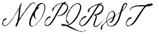 Palomino Script Font UPPERCASE