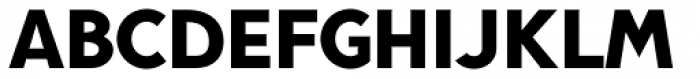 Pani Sans Black Font UPPERCASE