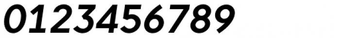 Pani Sans Bold Italic Font OTHER CHARS