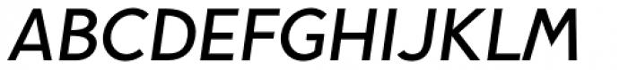 Pani Sans Semi Bold Italic Font UPPERCASE