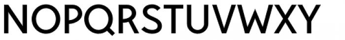 Pani Sans Semi Bold Font UPPERCASE