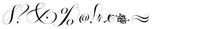 Parfait Script Contextual Font OTHER CHARS
