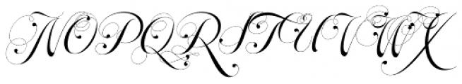 Parfait Script Contextual Font UPPERCASE