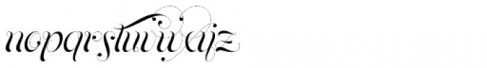 Parfait Script Contextual Font LOWERCASE