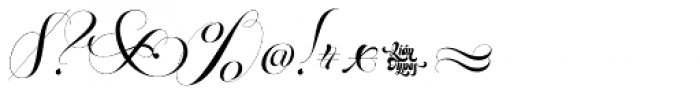 Parfait Script Swash Font OTHER CHARS