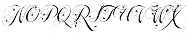 Parfait Script Swash Font UPPERCASE