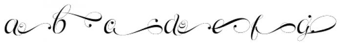 Parfait Script Swash Font LOWERCASE
