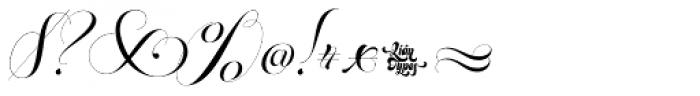 Parfait Script Titling Font OTHER CHARS