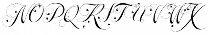Parfait Script Titling Font UPPERCASE