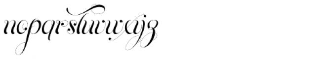 Parfait Script Titling Font LOWERCASE