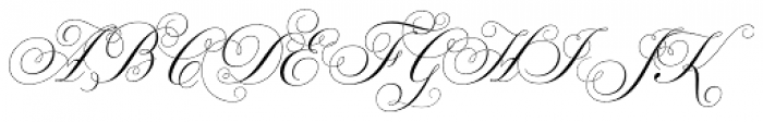 Parfumerie Script Curly Font UPPERCASE