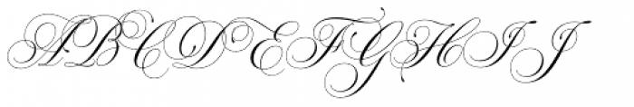 Parfumerie Script Pro Font UPPERCASE