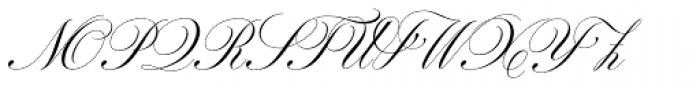 Parfumerie Script Text Font UPPERCASE
