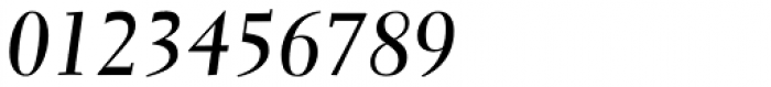 Parkinson Electra Pro Bold Italic Font OTHER CHARS