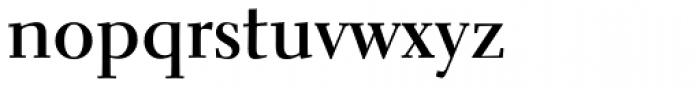Parkinson Electra Pro Bold Font LOWERCASE
