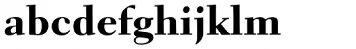 Parkinson Electra Pro Heavy Font LOWERCASE