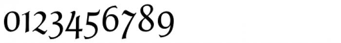 Parler Fraktur Regular Font OTHER CHARS