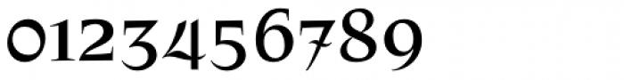 Patzcuaro Font OTHER CHARS