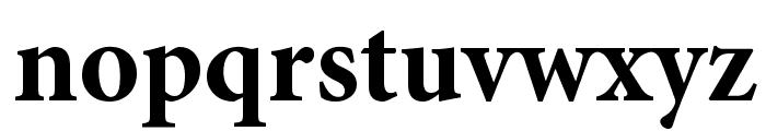 PentaGram s Gothika Bold Font LOWERCASE
