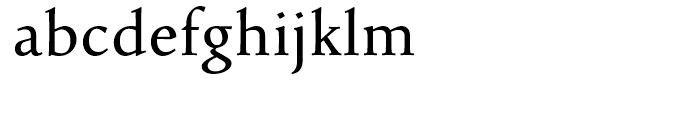Pescadero Regular Font LOWERCASE