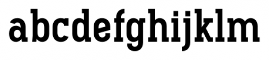 Pekora Bold Slab Serif Font LOWERCASE