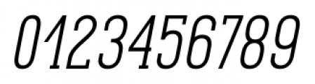 Pekora Light Slab Serif Italic Font OTHER CHARS