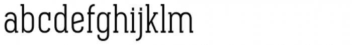 Pekora Light Slab Serif Font LOWERCASE