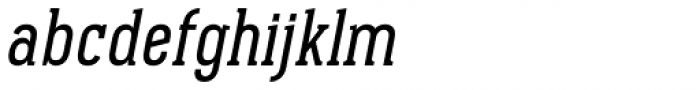 Pekora Regular Serif Italic Font LOWERCASE