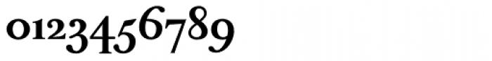 Peleguer Bold Font OTHER CHARS