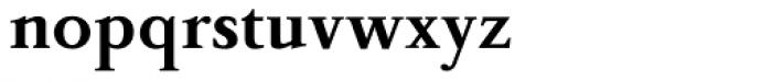 Peleguer Bold Font LOWERCASE