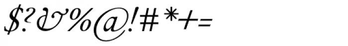 Peleguer Italic Font OTHER CHARS