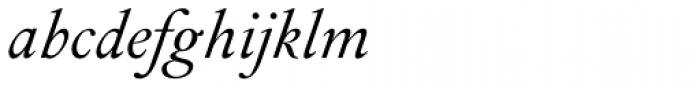 Peleguer Italic Font LOWERCASE