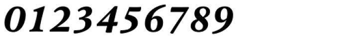 Pesaro Extra Bold Italic Font OTHER CHARS