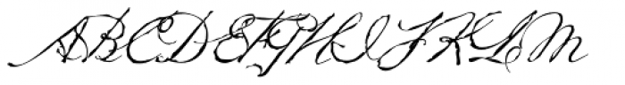 Petronella Font UPPERCASE