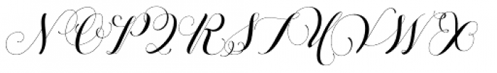 Petunia Monogram Font UPPERCASE