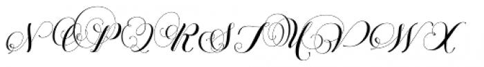 Petunia Monogram Font LOWERCASE