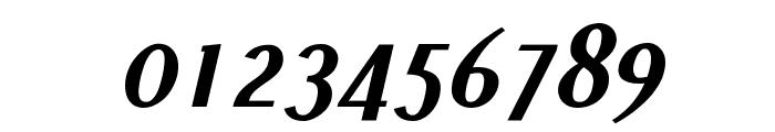 Pfennig Bold Italic Font OTHER CHARS
