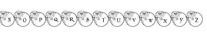 pf_xmas_flower1 Font LOWERCASE