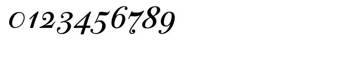 PF Bodoni Script Bold Font OTHER CHARS