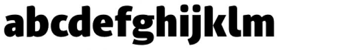 PF Adamant Sans Pro Black Font LOWERCASE