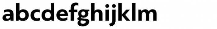 PF Bague Sans Std Bold Font LOWERCASE