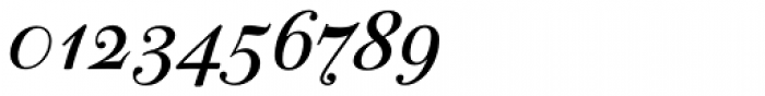 PF Bodoni Script Pro Bold Font OTHER CHARS