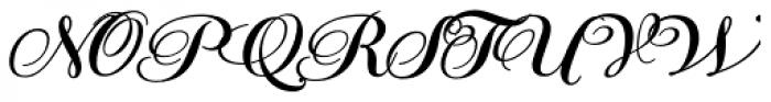 PF Bodoni Script Pro Bold Font UPPERCASE