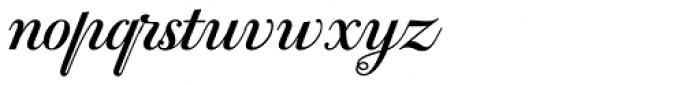 PF Bodoni Script Pro Bold Font LOWERCASE